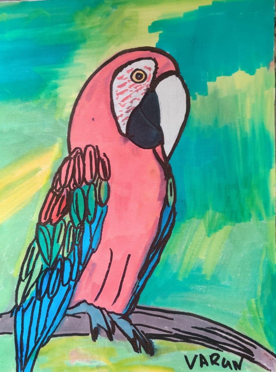 Scarlet Macaw Slider 1/4