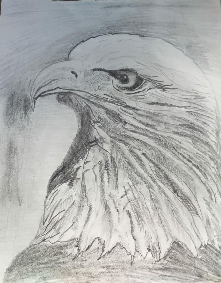Angry Eagle Slider 1/1