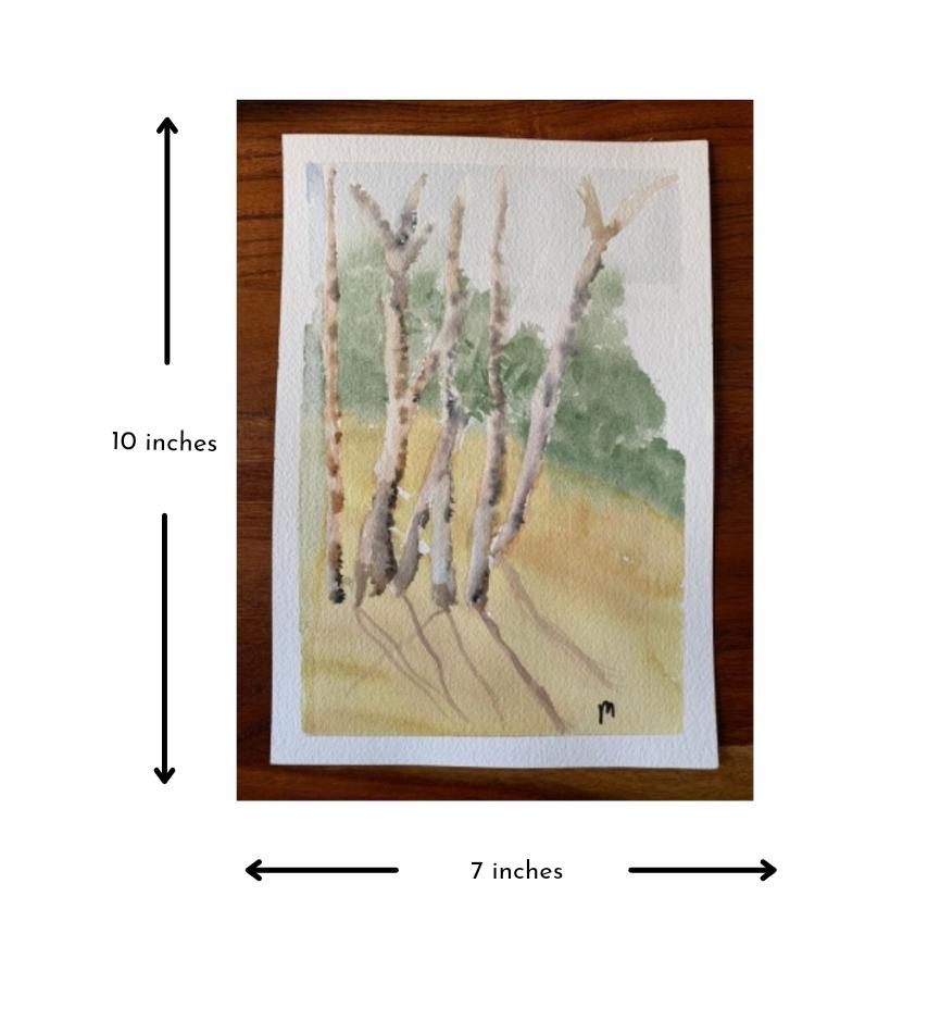 Cedars Slider 2/2