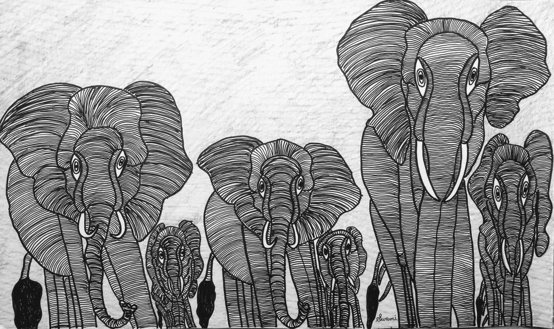 Elephants Slider 1/1
