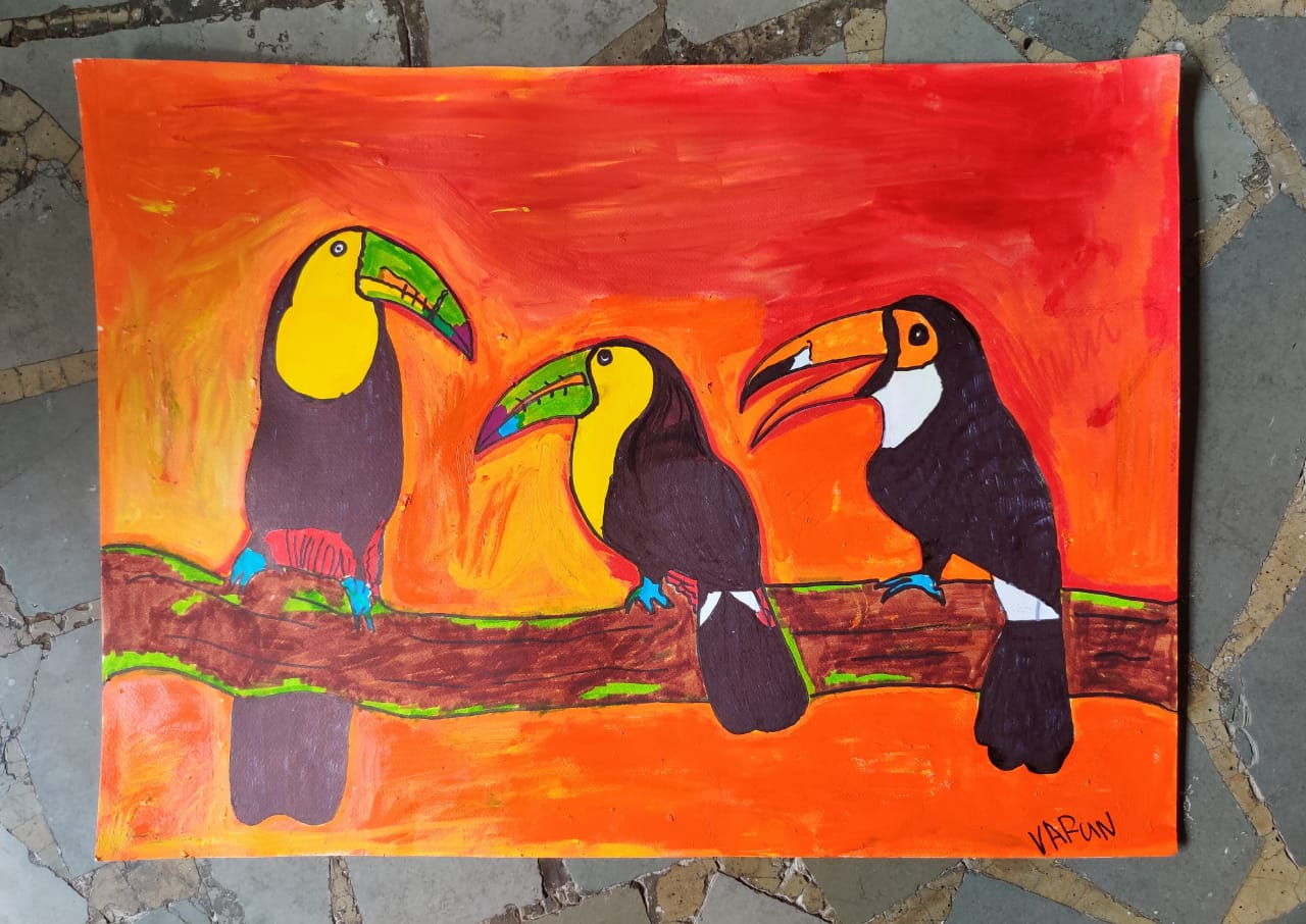 Toucans in a meeting Slider 1/4