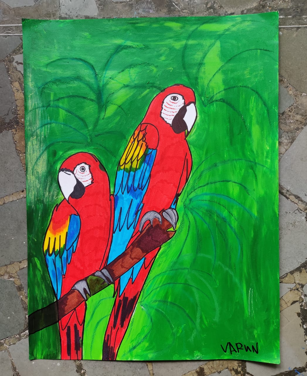 Scarlet Macaws Slider 1/4