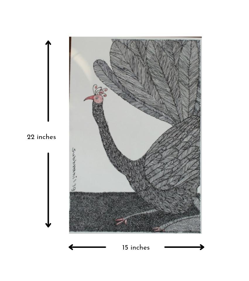 Peacock Slider 3/4