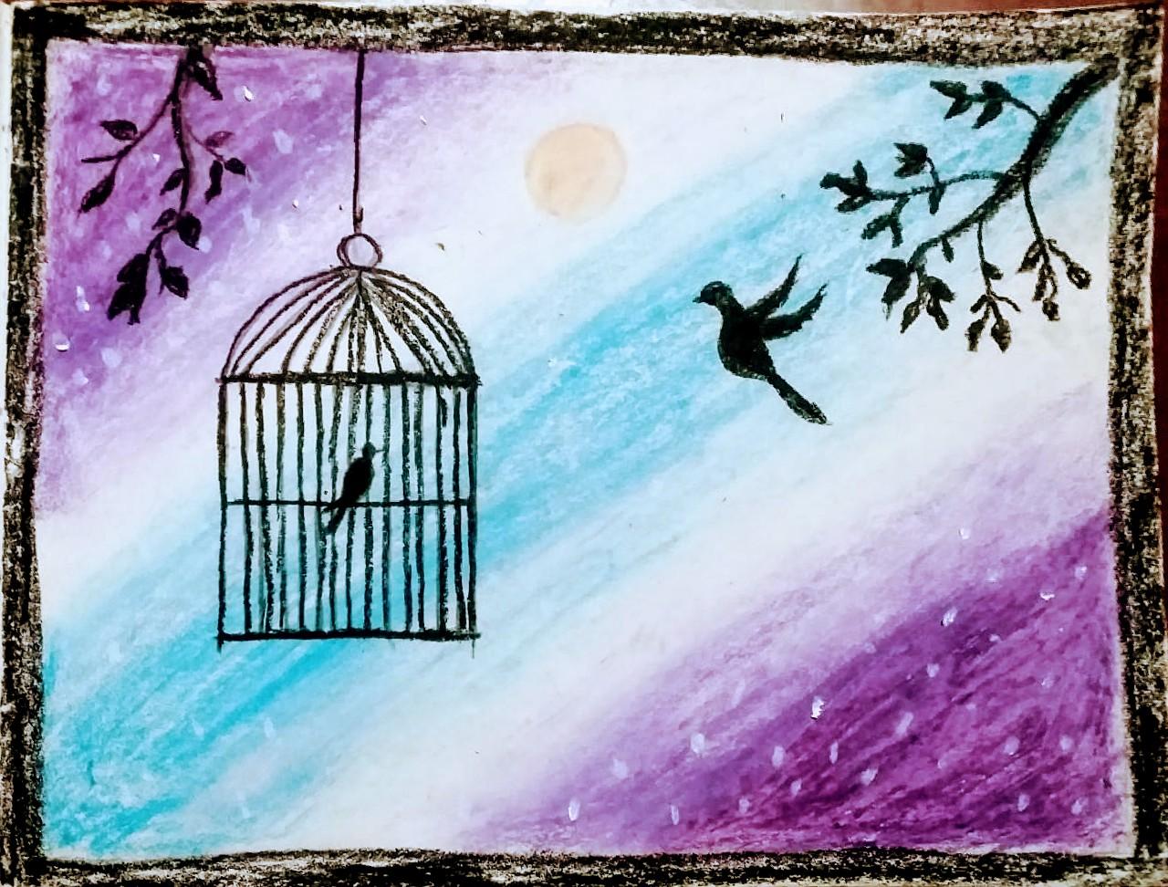 Birds want freedom Slider 1/3