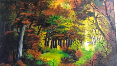Warm hues of forest