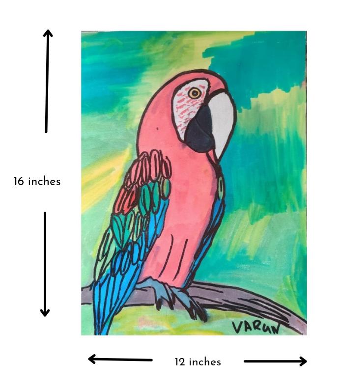 Scarlet Macaw Slider 3/4