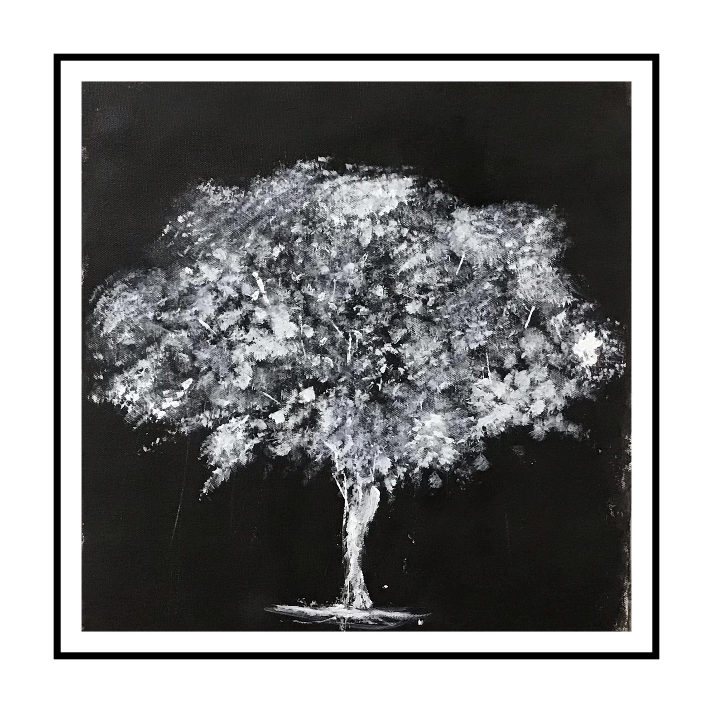 Black & White Tree Slider 1/3