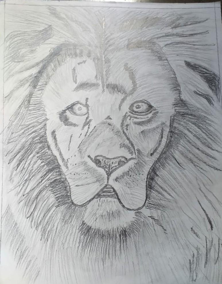 Innocent Lion Slider 1/1