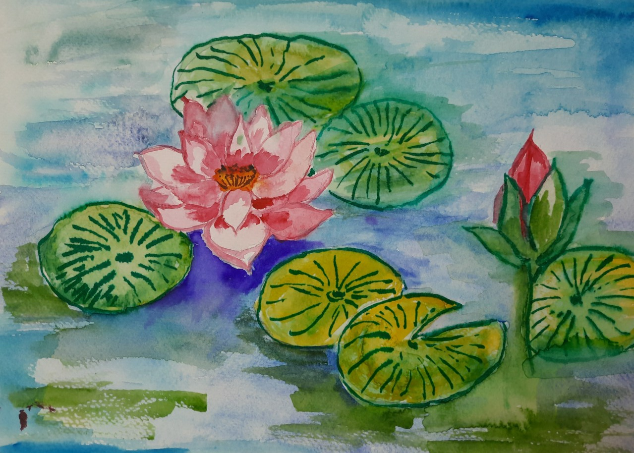 Lotus Slider 1/1