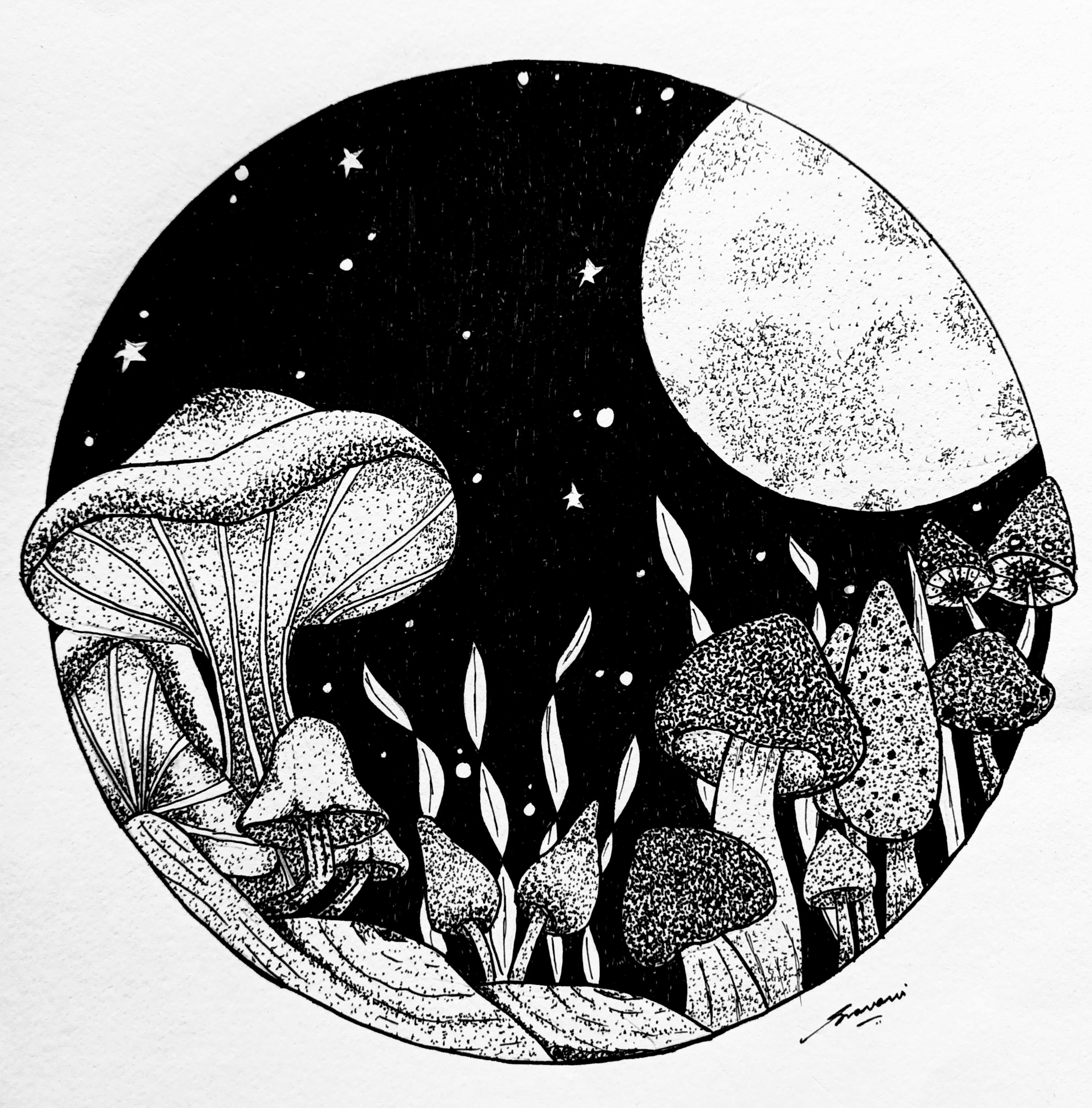 For the Love of mushrooms Slider 1/1