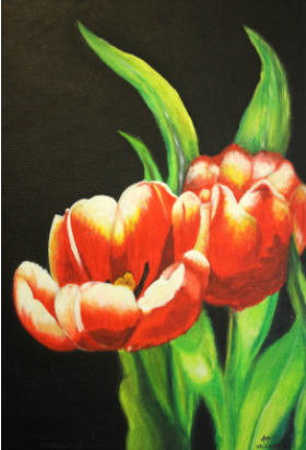 Bright Tulips Slider 1/1