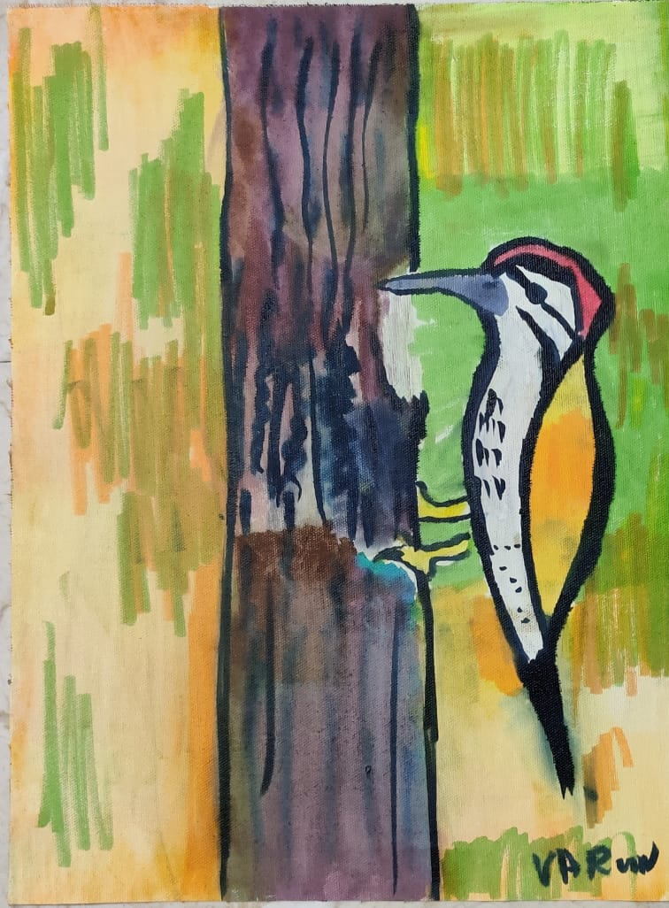 Tap Tap Woodpecker Slider 1/3