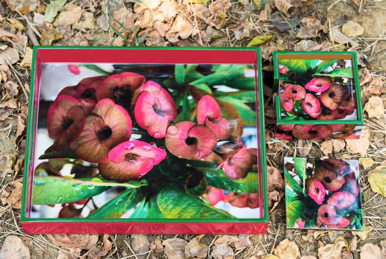 Laughing Flower Tray & Coasters